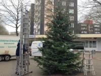 Weihnachtsbaum, 002